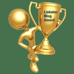 libster blog 4001 300x300 - Как делают реки