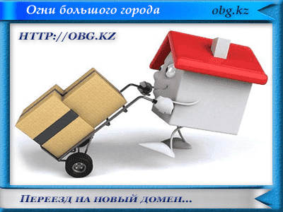 novy domen - Проблема с обновлением WordPress и плагинов