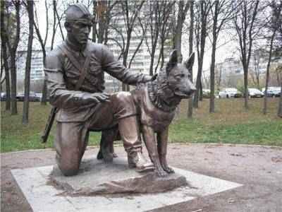 Боевые собаки