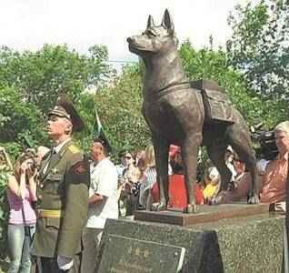 5202794 157632 318x300 - Боевые собаки Отечественной войны