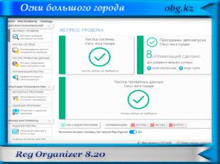 Reg Organizer 8.20